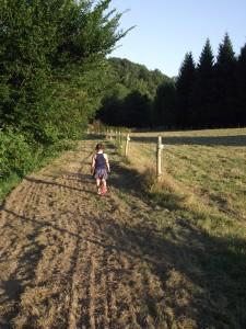 summertime walk
